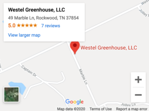 Go to Google maps for directions
